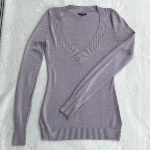 Express fitted vneck sweater
